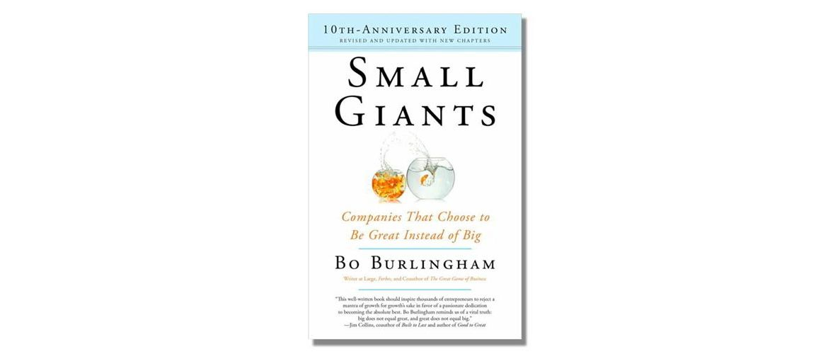 Small Giants Book Review